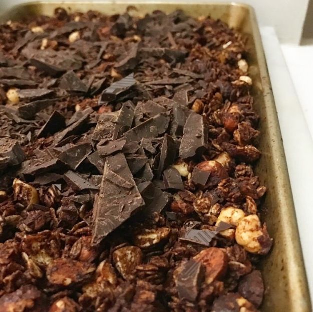Salted Chocolate Hazelnut Granola