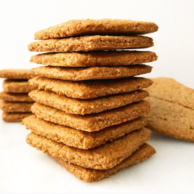 Toasted Oat Graham Crackers {Vegan & Gluten-Free}